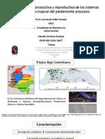 2 Caracterización productiva y reproductiva de los sistemas de los sistemas de lecheria tropical en el piedemonte araucano.pdf
