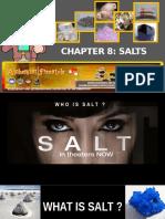 salts8-100929190617-phpapp01 (1).pptx
