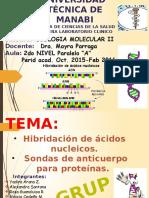 genetica molecular humana strachan pdf 217