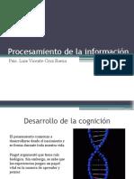 2.- Procesamiento de La Información