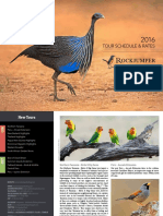 Rockjumper Birding Tours 2016 Catalogue Insert