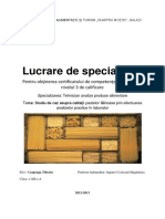 Proiect (paste fainoase lungi).pdf
