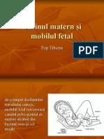 Bazinul Matern Şi Mobilul Fetal 2