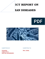 Project Report on Human Diseases