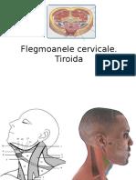 Flegmoane Cervicale