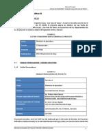 PERFIL  RIEGO ICA.pdf