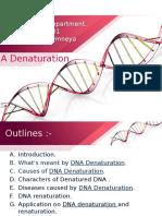 DNA Denaturation