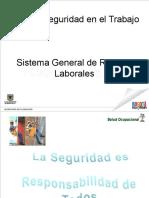 Cartilla Induccion Salud Seguridad Ries Lab
