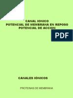 Canal Ionico %2c Potencial de Accion 2014 Ok