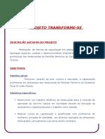 Projeto Transforme-se HISTORICO - 2013.doc