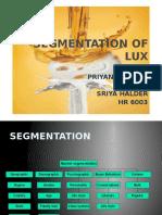 segmentationoflux-121111011339-phpapp02