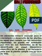 funcionesydeficienciasdenutrientes-130513203126-phpapp02