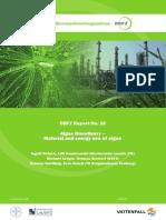 DBFZ Report 16