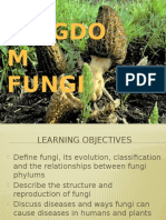 service learning kingdom fungi group 4
