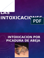 Intoxicacion Por Picadura