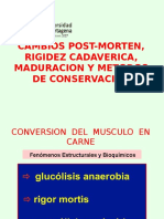 Cambios Post-morten, Rigidez Cadaverica, Maduracion,