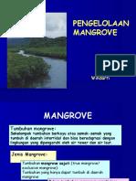 Konservasi Pengelolaan Mangrove (1)