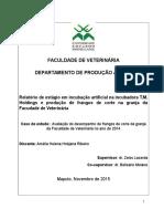 Relatório de estágio em incubação artificial na incubadora T.M. Holdings e produção de frangos de corte na granja da Facudade de Veterinária