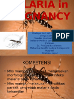 Malaria in Pregnancy