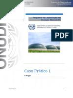 CP1Enunciado Biogas
