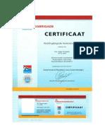 certificaat zwemmend redden voor zwembaden