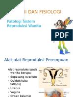 Reproduksi Wanita - Dr. Maria Poppy Herlianti, B.Sc, M.Epid