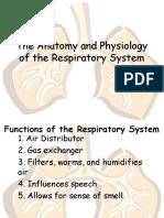 respiratory system msparmann