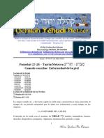 Parashat Tazria Metzora # 27-28 Adul 5770