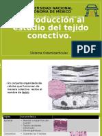 Introducción Al Estudio Del Tejido Conectivo - Copia