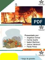 capacitacion desastres (1)