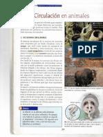 Circulación Animales Nuevas Ciencias