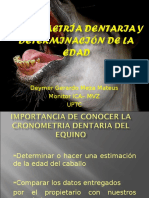 Cronometria Dentaria