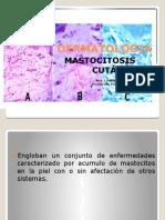 Dermatologia Pauly