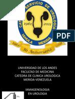 imagenologia en urg - copia.pdf