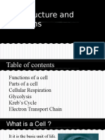 Cell Structure and Functions.pptx