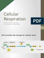 Cellular Respiration.pptx