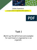 cellular organisation