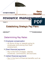 11. Establishing Strategic Pay Plan Ppt11 (1)