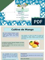 cultivos frutales