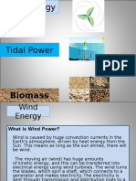 wind and biomass.ppt