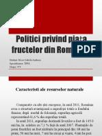 Politic i