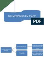 Polimerização Em Etapas e Por Abertura de Anel