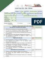 Guía de Observación de Clase