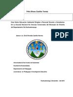 Informe Final - Felix Eliseo Castillo Tomas