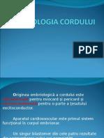 CURS 01-Anatomie Si Embriologie