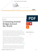 12 Amazing Animal Bridges Around the World «TwistedSifter