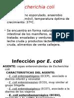 ETA 3 bacterias