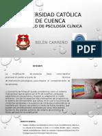 ECONOMÍA DE FICHAS.pptx