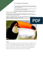 Animais e Plantas Do Pantanal