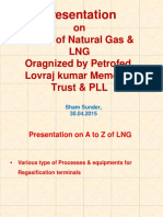 Natural Gas and LNG - Petrofed